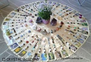 cristalli e fiori nuova