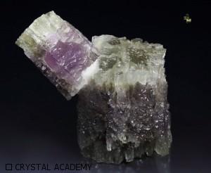 aragonite viola